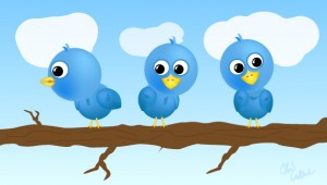 twitter birds