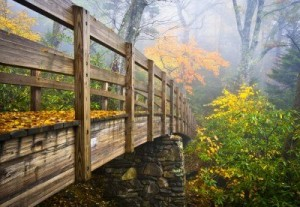 11235834-autumn-appalachian-hiking-trail-foggy-nature-blue-ridge-fall-foliage-bridge-near-grandfather-mountai