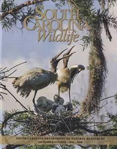 sc wildlife