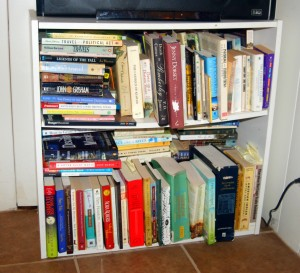 One of my many bookshelves. If you listen hard, you'll hear my husband telling me it's time to Spring clean.