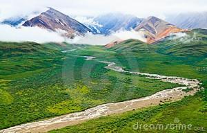 summer-landscape-denali-national-park-alaska-21062368